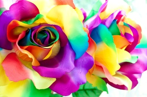 fake colorful rose as handicraft flower